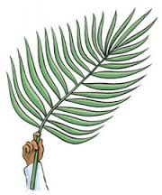 Palm Sunday branch